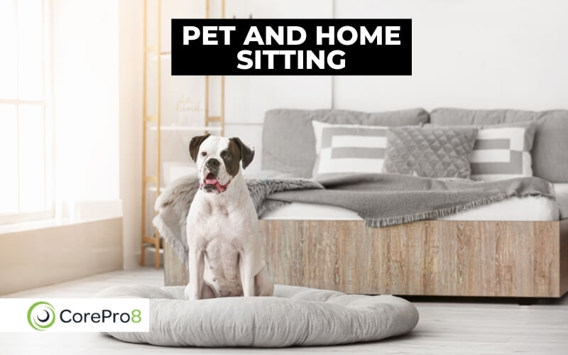 Pet and home sitting